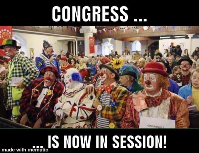 Image result for mematic congress in session